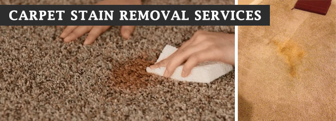 Carpet Stain Removal Services Adelaide