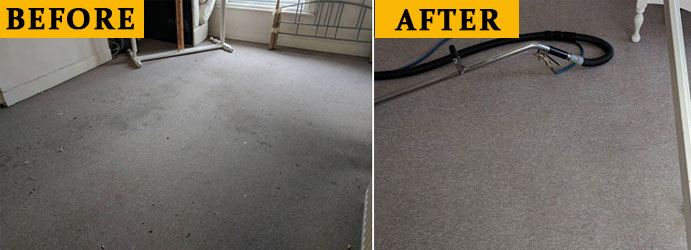 Carpet Cleaning Before and After in Brisbane